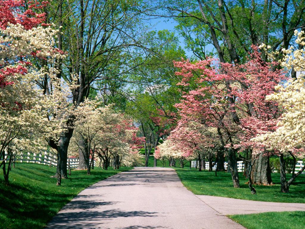 Sanità: 5 regole per sopravvivere all'arrivo della primavera