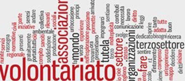 """Terzo settore, Binetti: """"Serve revisione sostanziale della legge"""""""