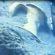 Archeologia. Ischia sommersa, ritrovamenti in diretta