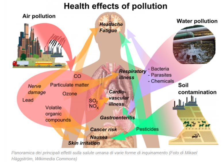 effects of pollution on environmen1 Air pollution affects the environment by causing acid rain, reducing visibility, damaging plants and animals, and contributing to climate change it has a negative effect on biodiversity and the survival of species air pollution is caused by both particulate and gaseous pollutants.
