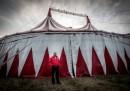 Orfei Circus in L'Aquila