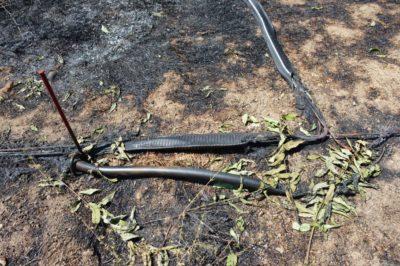 Incendio discarica Bussi (AQ)